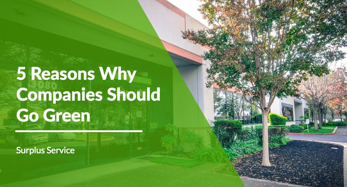 5 Reasons Why Companies Should Go Green